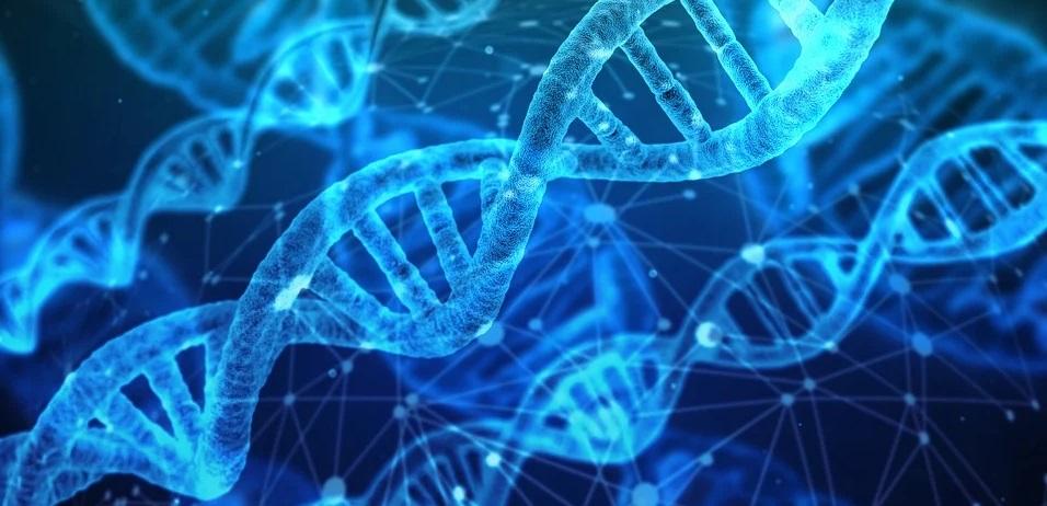 ADN en el día de la madre tierra
